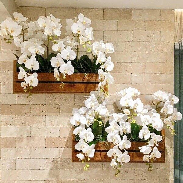 Cultive lindas orquídeas na sua floreira de madeira de parede. Fonte: Rosário Patrick
