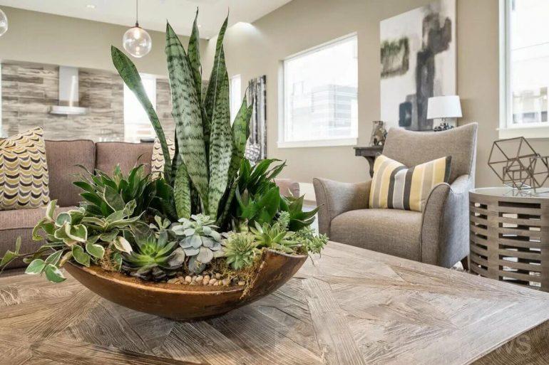 Enfeite de mesa com plantas