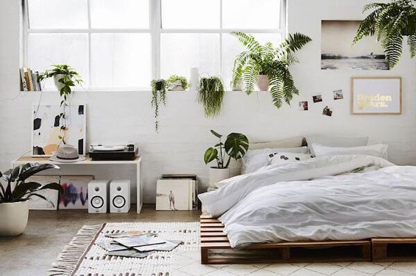 Quartos tumblr plantas