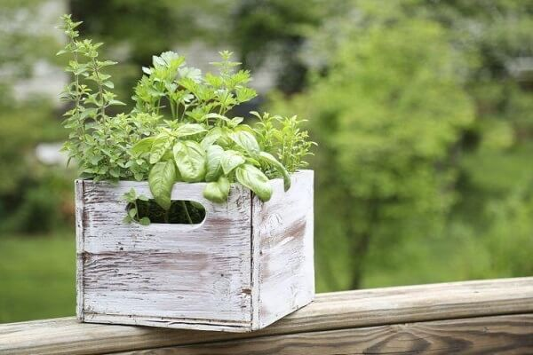 Transforme caixotes em lindas floreiras de madeira
