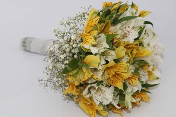Astromelia amarela com branco