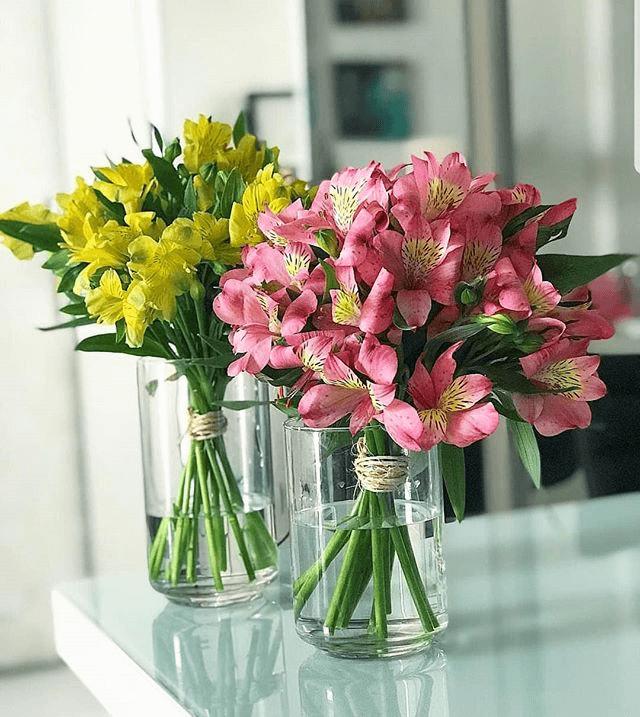 Flor astromélia