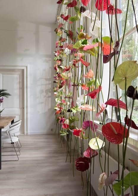 Flores vermelhas na cortina de anturios