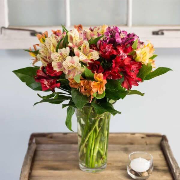Arranjos de flores coloridas