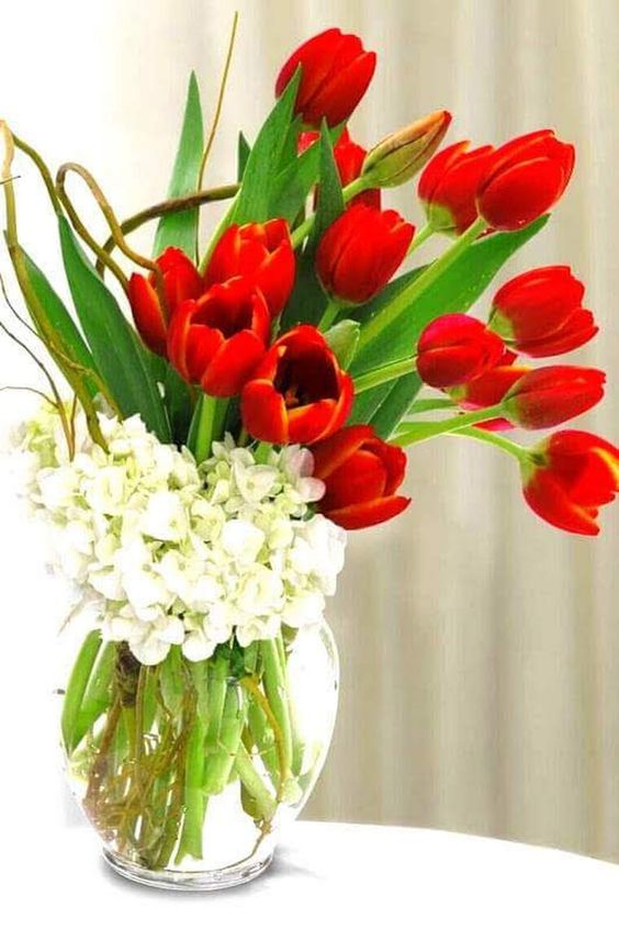 Flores vermelhas para decoração da sala de estar