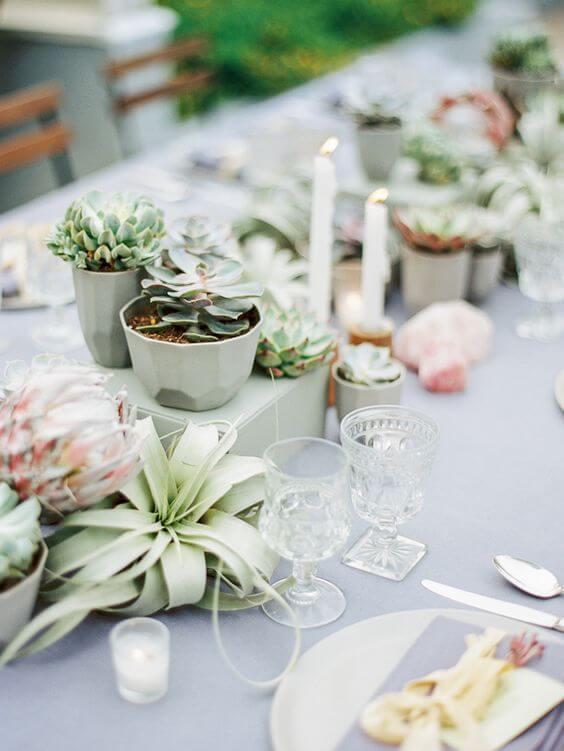Lembrancinha centro de mesa com suculentas