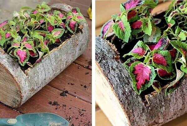 Floreira rústica feita com tronco de árvore