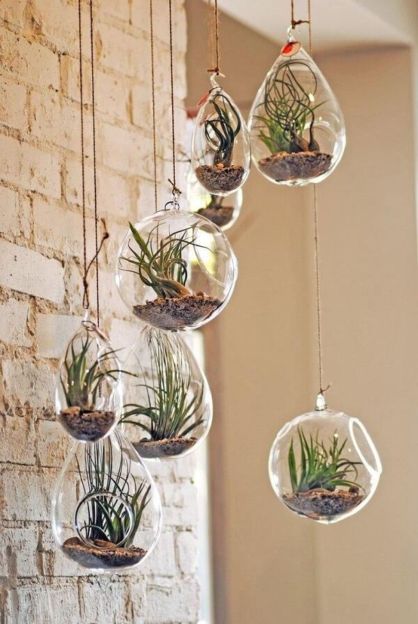 Reserve um lugar especial da casa para cultivar suas plantas