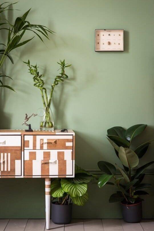 A parede verde se mistura com a folhagem das plantas - Fonte: Pinterest