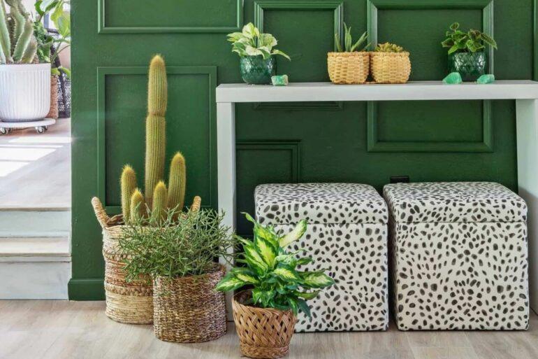 A parede verde traz cor e frescor para a decoração. Fonte: Pinterest