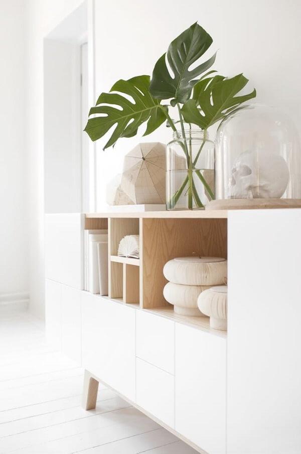 Coloque folhas de costela de adão dentro do recipiente de vidro e forme um lindo arranjo