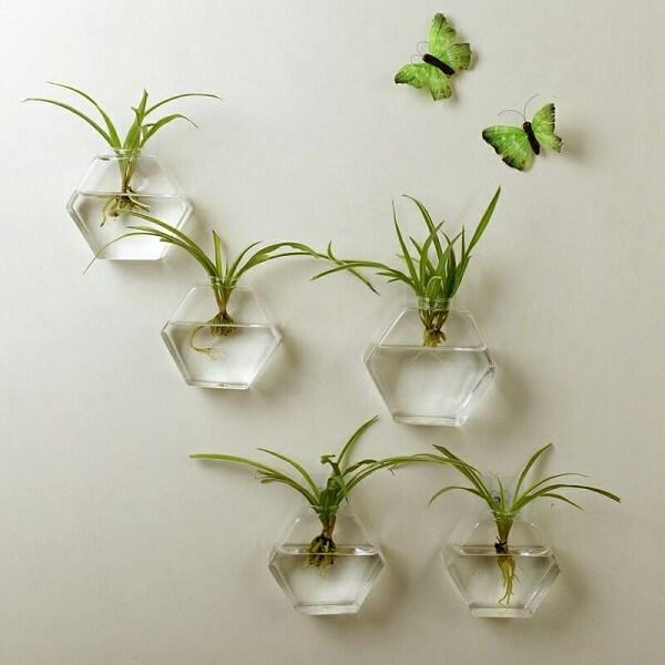 Fixe o recipiente de vidro com plantas na parede