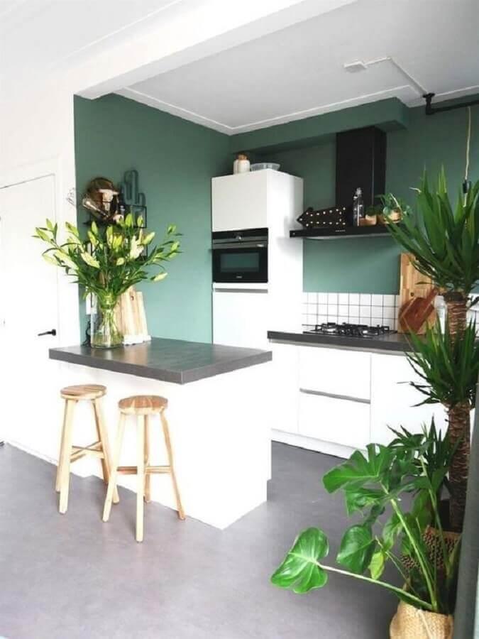cozinha planejada pequena decorada com parede verde Foto Reformar sem Quebrar