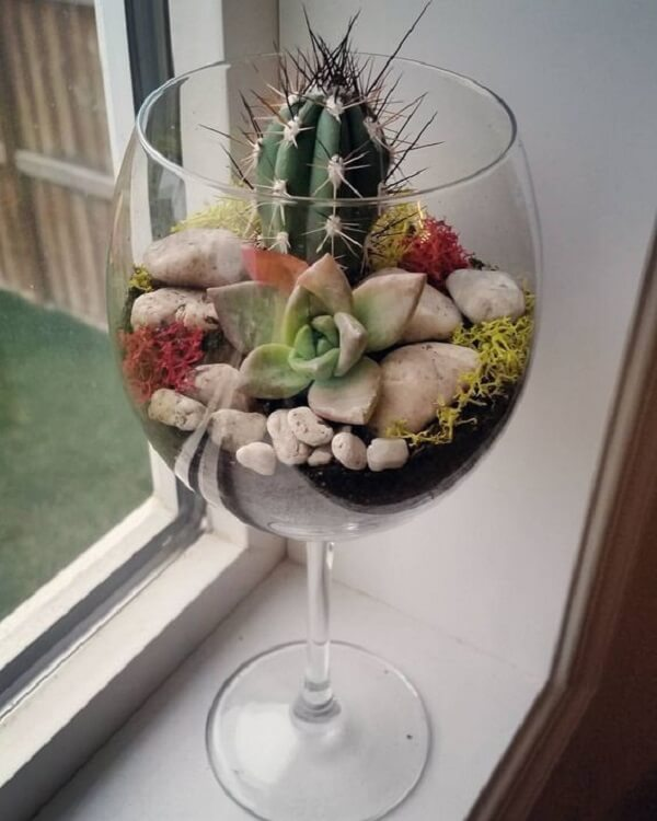 A taça de vinho pode servir de recipiente para o cultivo de cactos e suculentas
