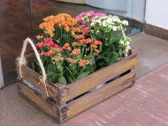 Floreira de caixote de madeira