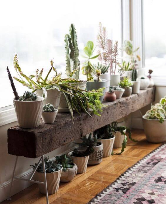 Floreira de chão para plantas