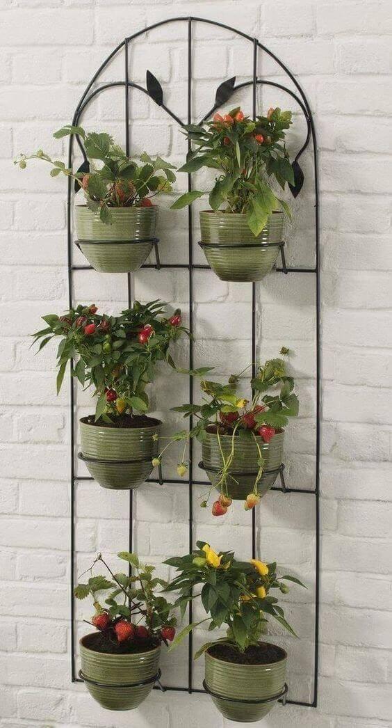 Parede decorada com vasinhos de plantas