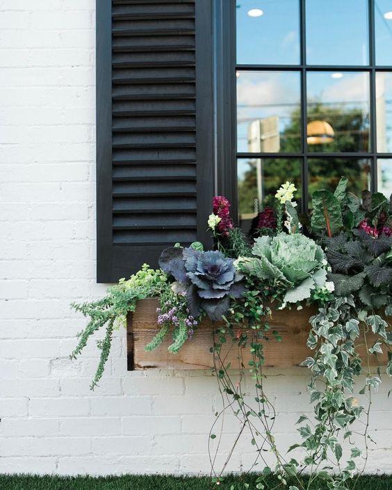 Floreiras na janela com flores lindas