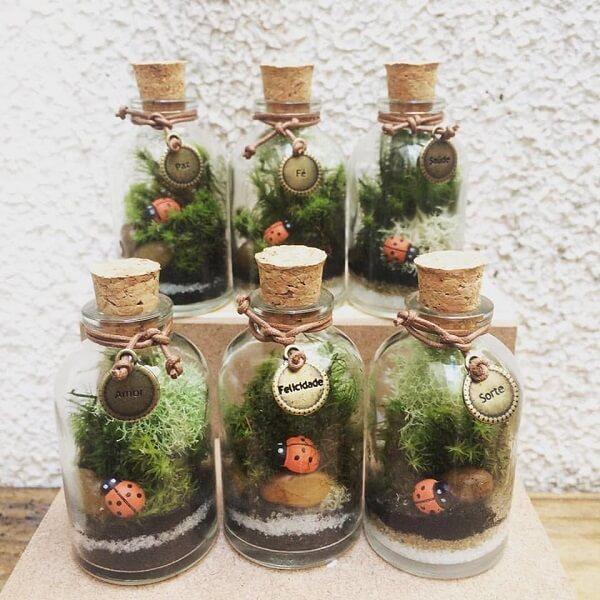 Cultive terrários dentro do recipiente de vidro