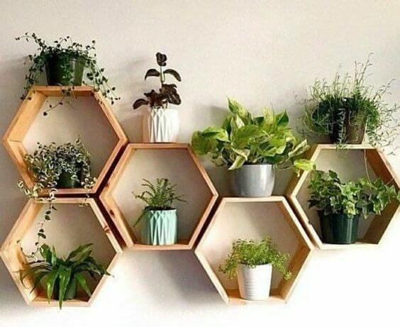 Nichos de madeira com plantas na decoração