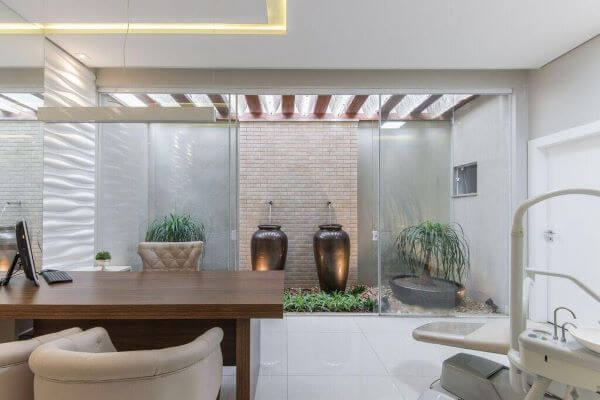 Plantas para jardim de inverno dentro de casa