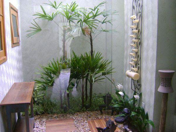 Plantas para jardim de inverno na sala