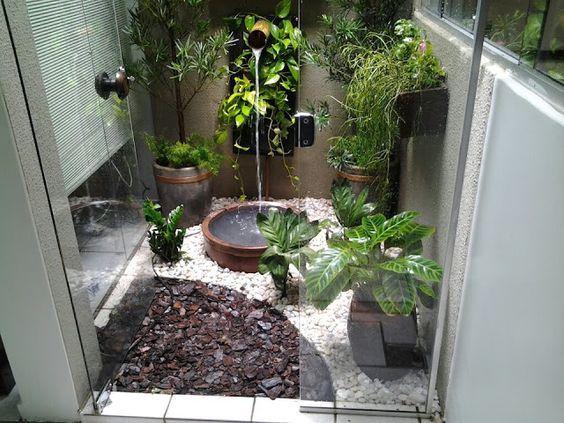 Plantas para jardim de inverno pequeno