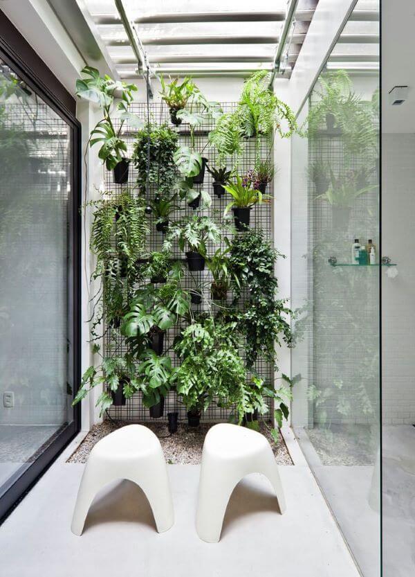 Plantas para jardim de inverno vertical