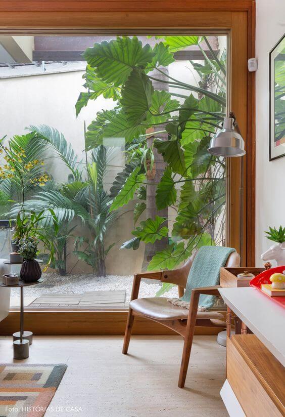 Plantas para jardim de inverno externo e aconchegante