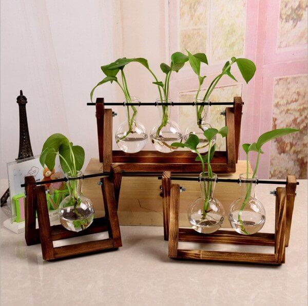 No mercado é possível encontrar diferentes modelos de recipientes de vidro para plantas