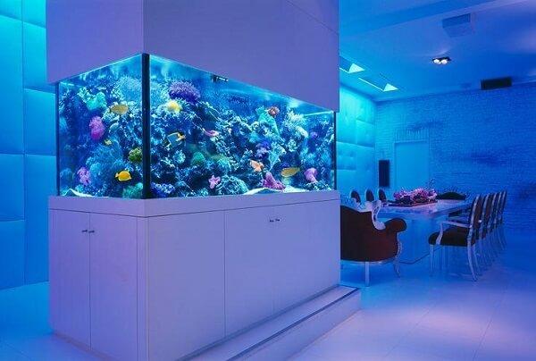 A iluminação azul do aquário pode se estender por todo o ambiente