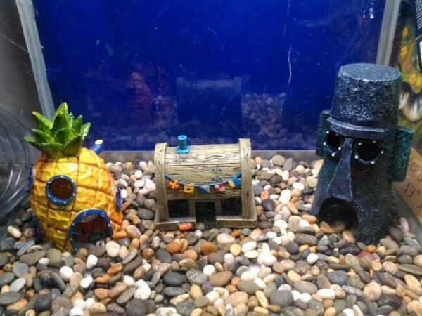 Além das plantas para aquário é possível incluir ornamentos divertidos
