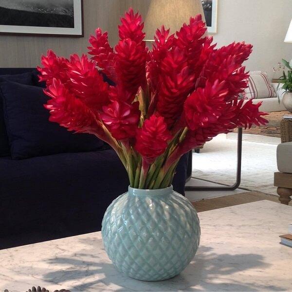 Flores tropicais alpínias vaso branco