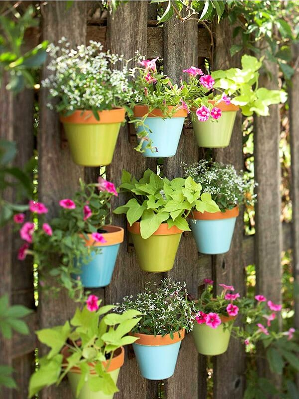 Flores tropicais em um jardim vertical
