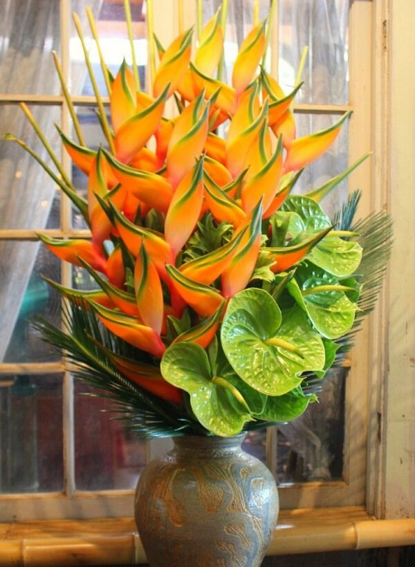 Flores tropicais helicônias amarelas