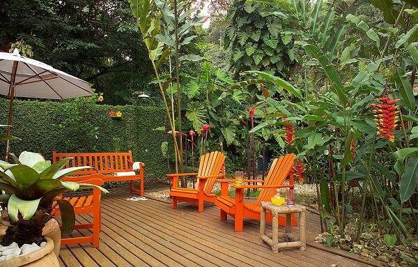 Flores tropicais helicônias no jardim