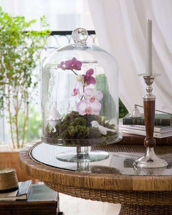 Flores tropicais orquídeas em vaso