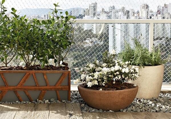 Flores tropicais em vasos na varanda