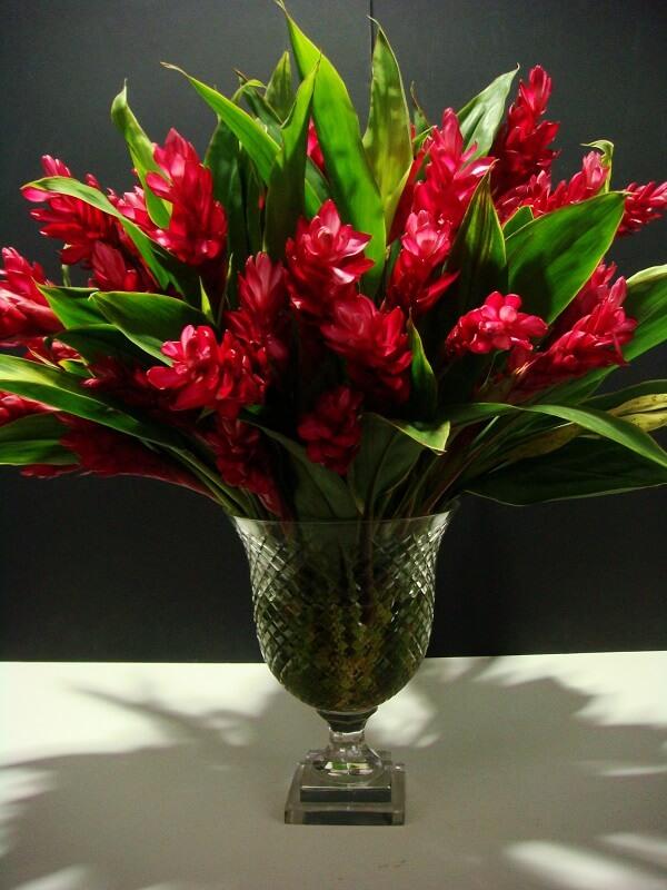 Flores tropicais vasos alpínias