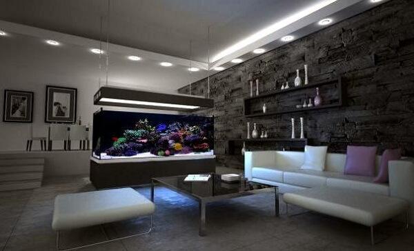 Invista em uma iluminação especial para melhor desenvolvimento das plantas para aquário