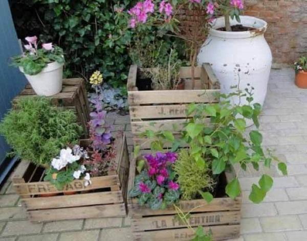 Caixotes de madeira alinhados com flores e plantas