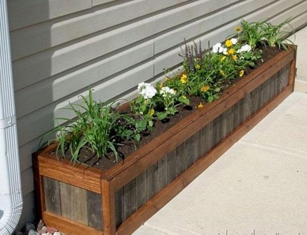 Canteiro de madeira com plantas variadas