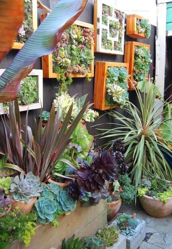 Caixotes de madeira suspensos com diferentes plantas