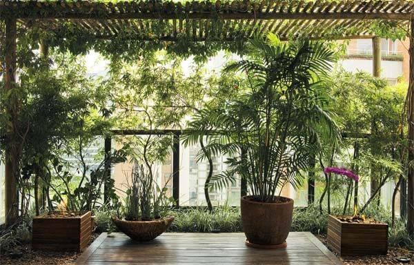 Sacada repleta de plantas de diferentes tamanhos, chão de madeira e vasos de diferentes formas