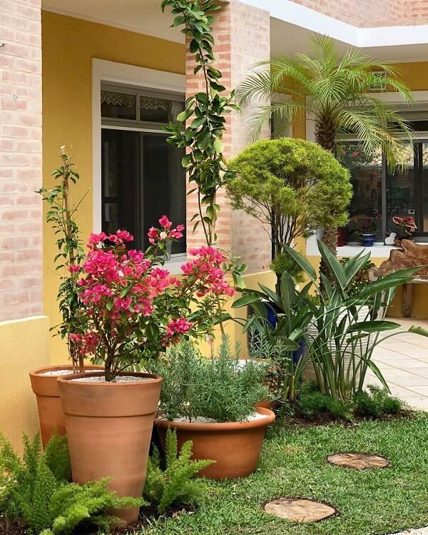 Frente de casa com pintura amarela e diferentes vasos