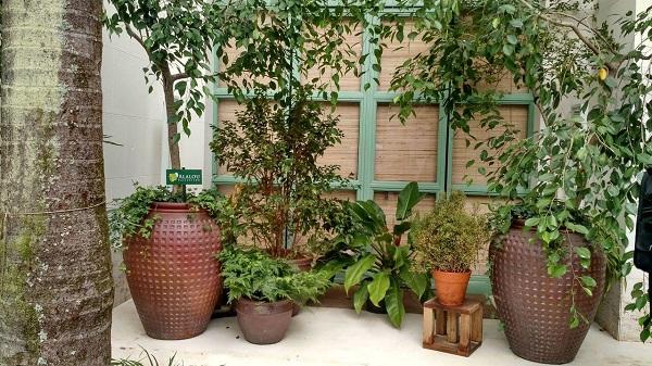 Jardim simples com vasos de tamanhos diversos