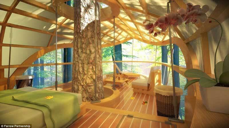 Móveis de madeira complementam a decoração do ambiente