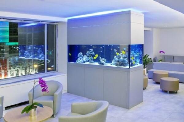 As plantas para aquário podem integrar perfeitamente a decoração da sala de estar