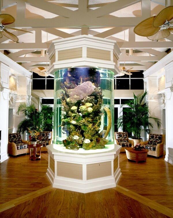 As plantas para aquário são o ponto central na decoração desse ambiente