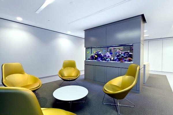 O escritório pode receber uma decoração mais sofisticada com a presença de plantas para aquário